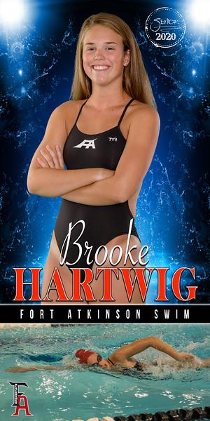 3X6 Brooke Hartwig Banner.jpg