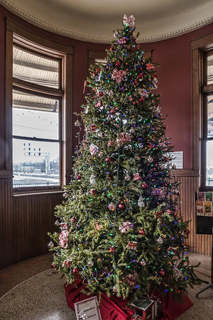 Christmas trees, whole and in part