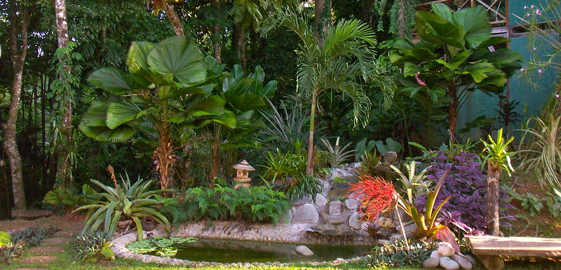 Our pond with fountain