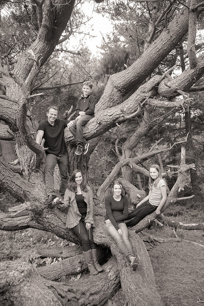 Madden Family 2013-105.jpg