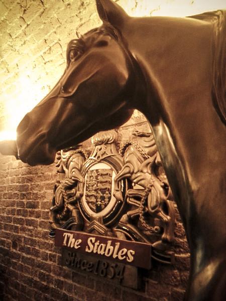 camden stables horse.jpg