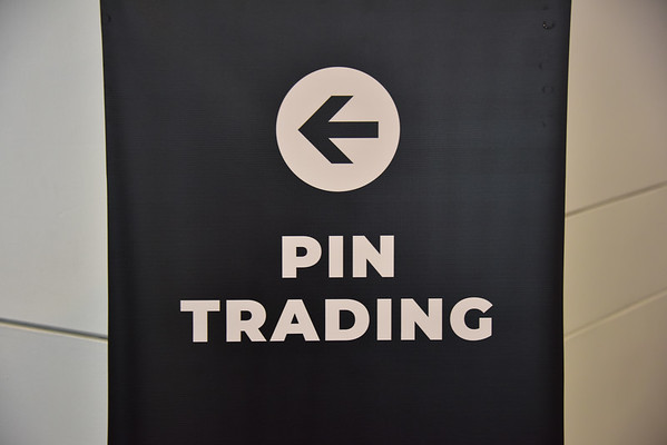Pin Trading 2019