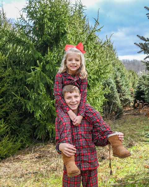 2019 Tree Farm-Taylor-00011.jpg