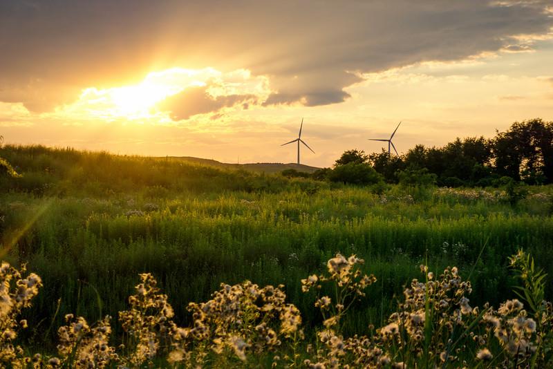 Sunset Windmills - Chestnut Grove Natural Area (p).jpg