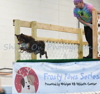 Frosty Paws II January 12 2018