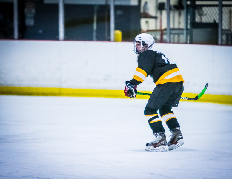 Bruins2-157.jpg