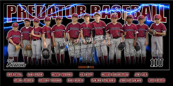 Predators Team Poster