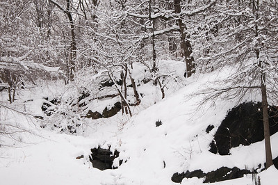 Central Park in Snow 2010