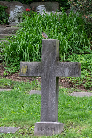 Mt Auburn Cemetery 2--June-2019