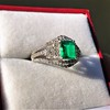 1.29ctw Emerald and Diamond Modified Halo Ring 27