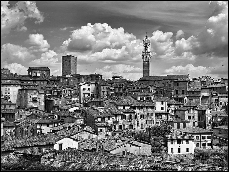 2018-06-Siena-897.jpg