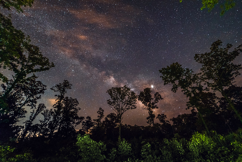 Mark Twain National Forest under the stars