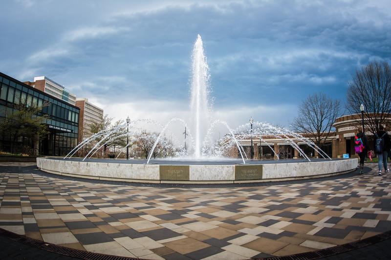 fountain_Gibbons-8480.jpg