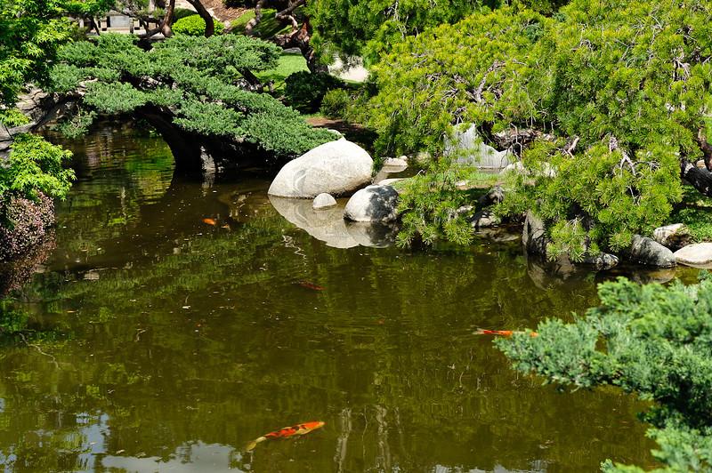 HL-Japanese Garden-5