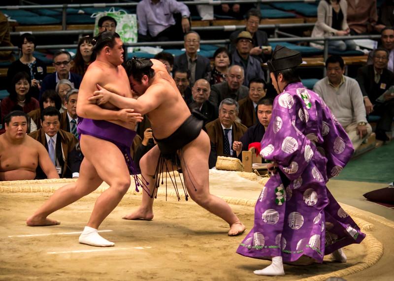 Osaka Sumo 220313 43 .jpg