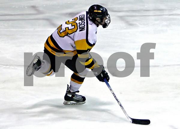 2006/07 Junior Bruins - Little Bruins
