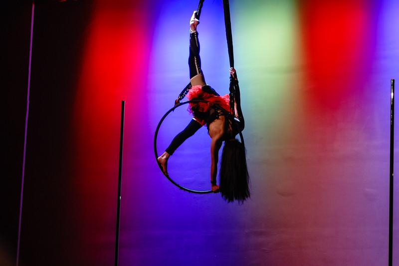 Kairos Circus Benefit-20150109-185.jpg