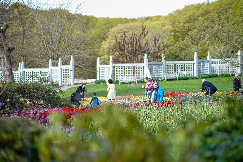 Arboretum nw1-5.JPG