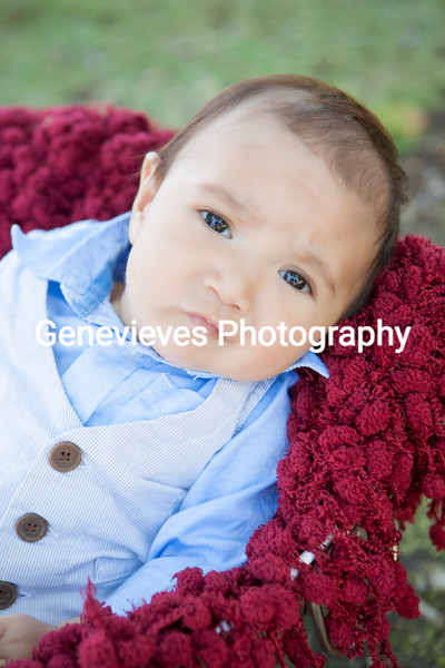 Baby Kitchens 3month Session