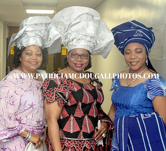 Diaspora Nigerians Network Town Hall Meeting  Oct 29, 2011