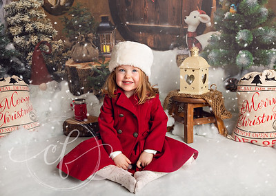 Christmas Photoshoots for babies and children