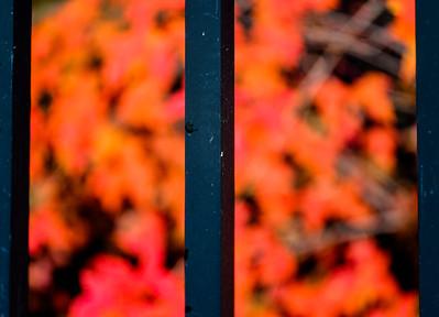 2014-10-17_Home