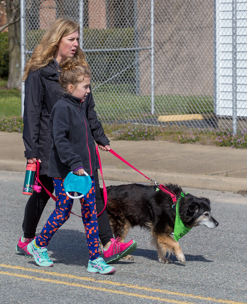 Richmond Spca Dog Jog 2018-768.jpg