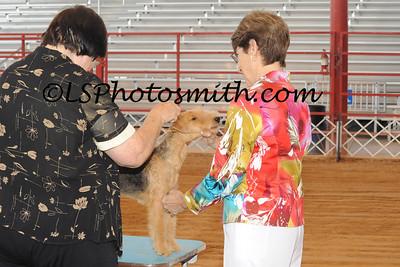 Ft Lauderdale Dog Show