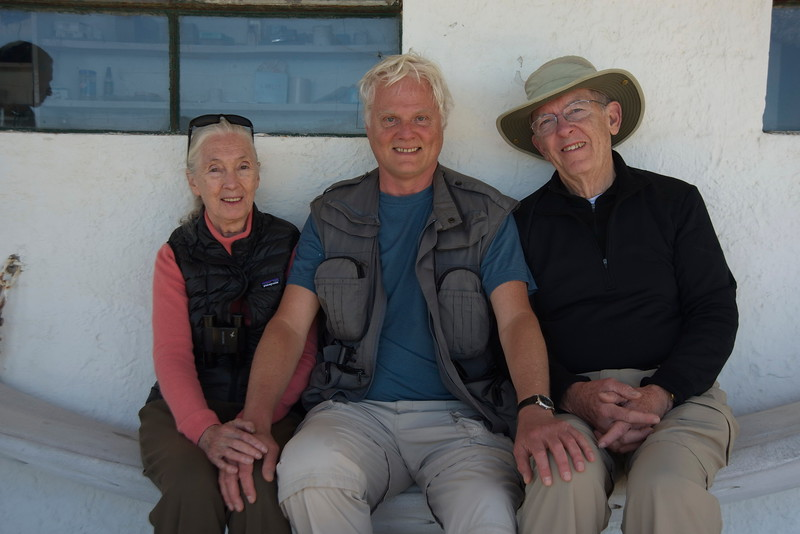 Jane, Roger y Caio