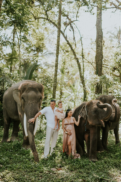 VTV_family_photoshoot_elephants_Bali_ (63).jpg