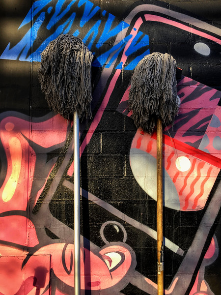 Two Mops
