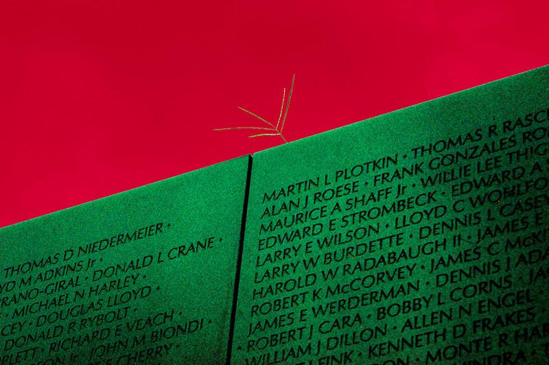 040918 0205 Washington DC - Vietnam Veteran Memorial Wall Twig _D _E _N ~E ~L.JPG