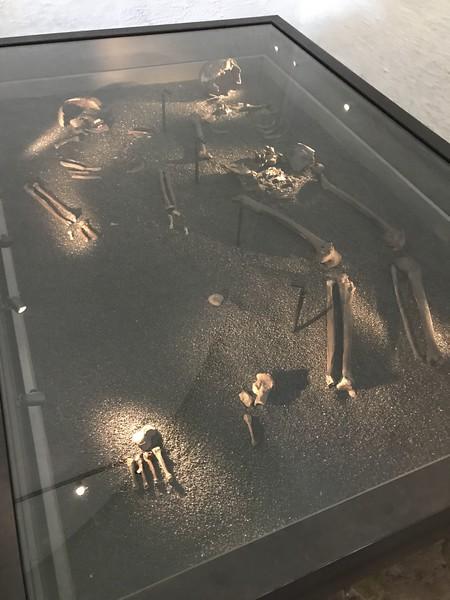 Viking Ship Museum -