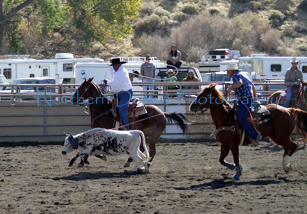 Team Roping ~ Sunday