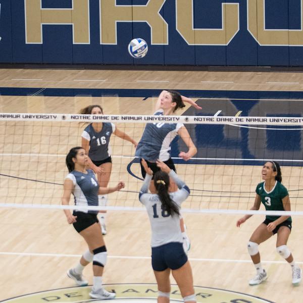 HPU Volleyball-92166.jpg