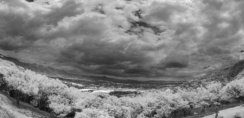 View from Monkey Mountain, Arashiyama.