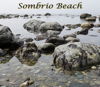 Sombrio Beach & Port Renfrew