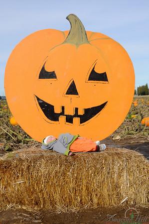 Theo's Visit to a Pumpkin Farm