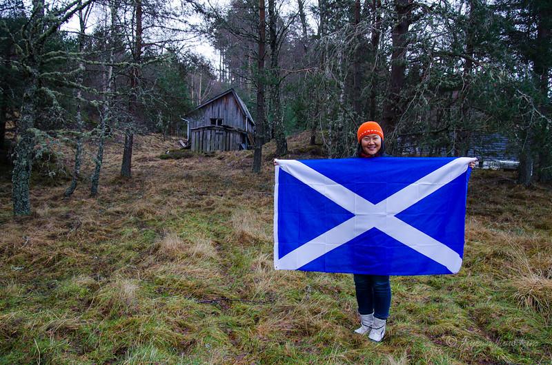 Scotland-Highland-9271.jpg