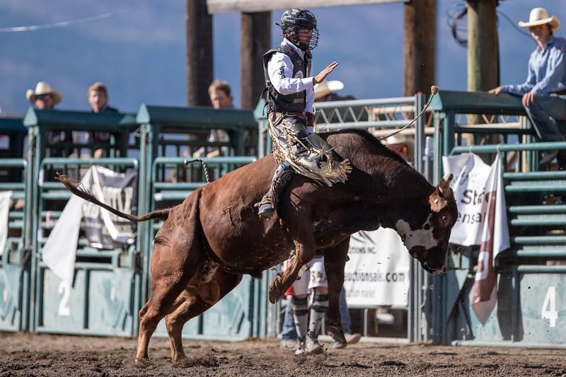 2019 Rodeo 5 (254 of 574).jpg