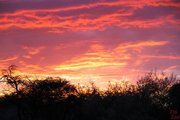 Sunset Africa Okonjima, Namibia