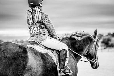 Georgia Horse Show