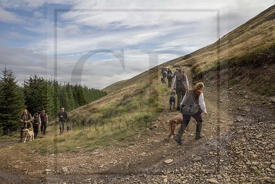 CONTENDER GUNDOGS - WALKED UP GROUSE DAY