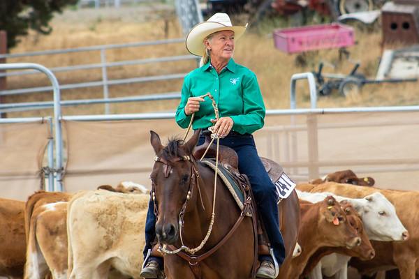 2019 Ranch Horse Versatility Show