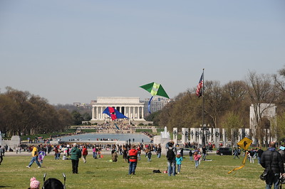 3-27-2010 DC Kites, Cherry Blossoms, Dpgs