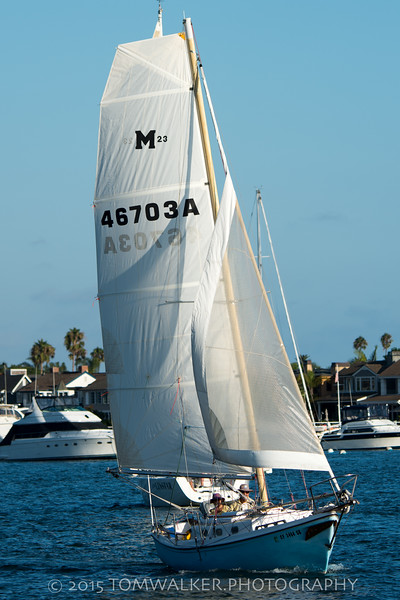 September42015_Beercan_Race-53