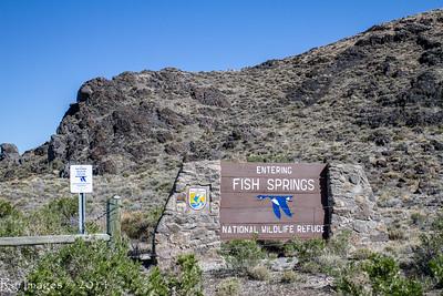 Fish Springs 2014