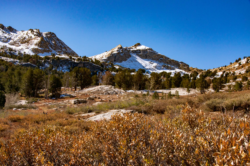 First Snow in Lamoille Canyon