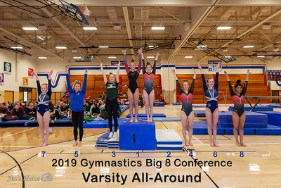 HS Sports - Gymnastics Big 8 Conference - Feb 16, 2019