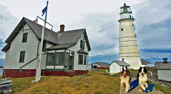 BostonLight.GaWy_650X360.jpg